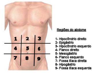 Regiões do abdome