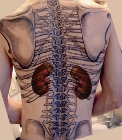 10 sintomas de doença renal.